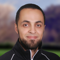 Osama AbdelKarim AboulHassan