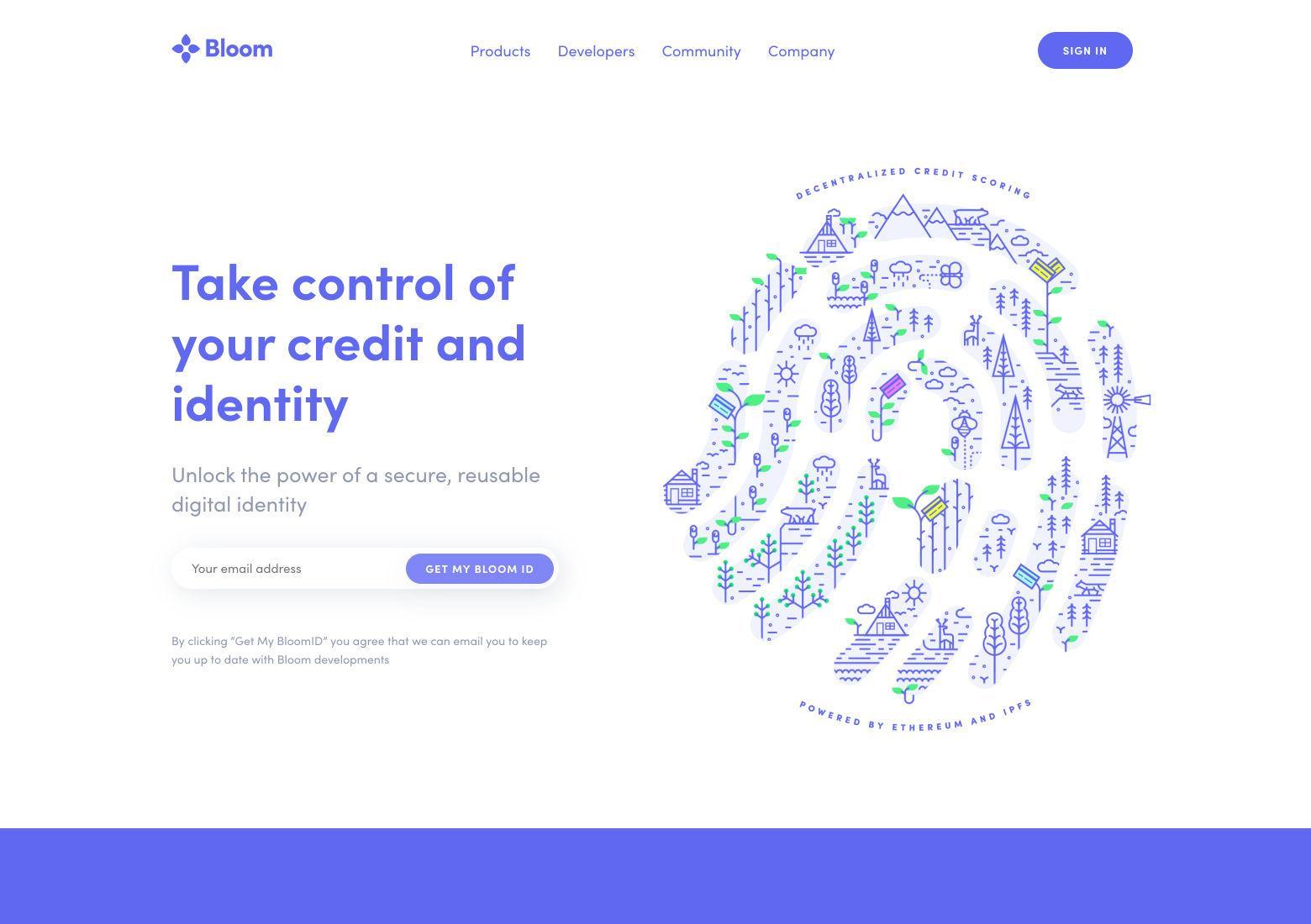 Basic website layout: split screen