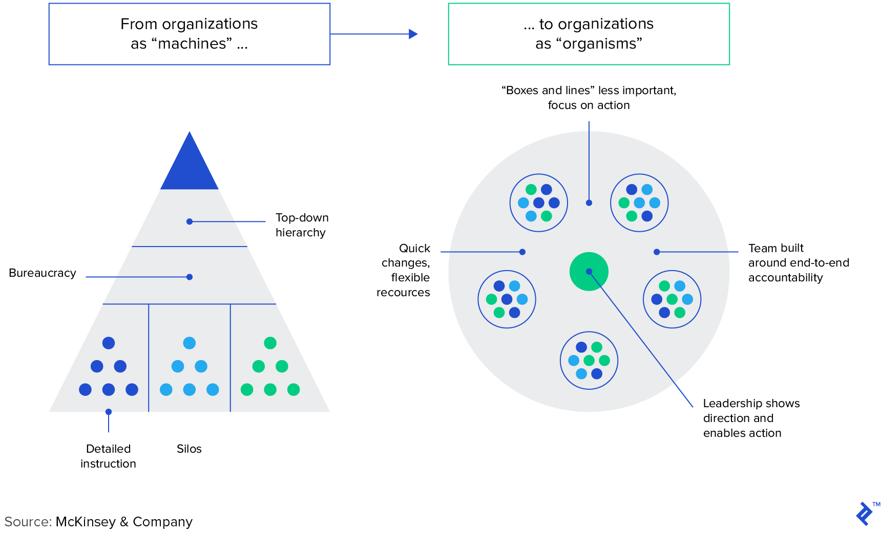 Framework for agile organizations